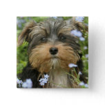 York Terrier Square Pin