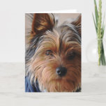 Yorkie Terrier  Greeting Card